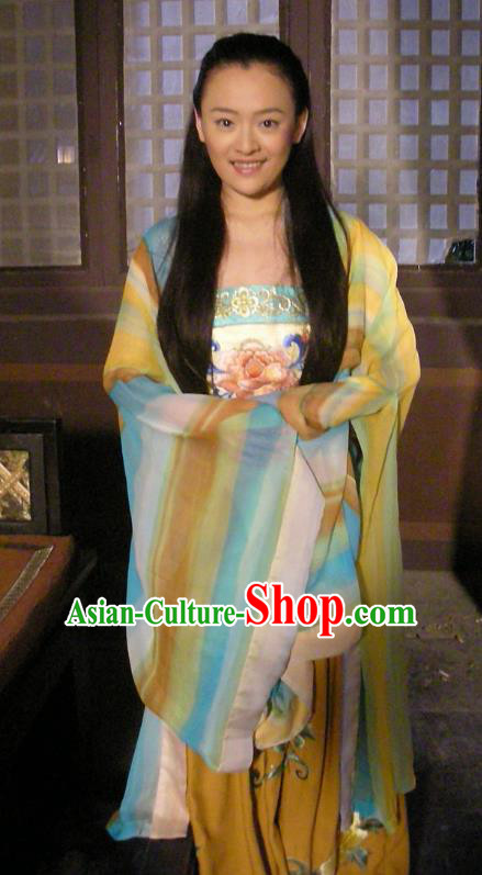 Chinese Traditional Tang Dynasty Palace Princess Embroidered Replica Costume for Women
