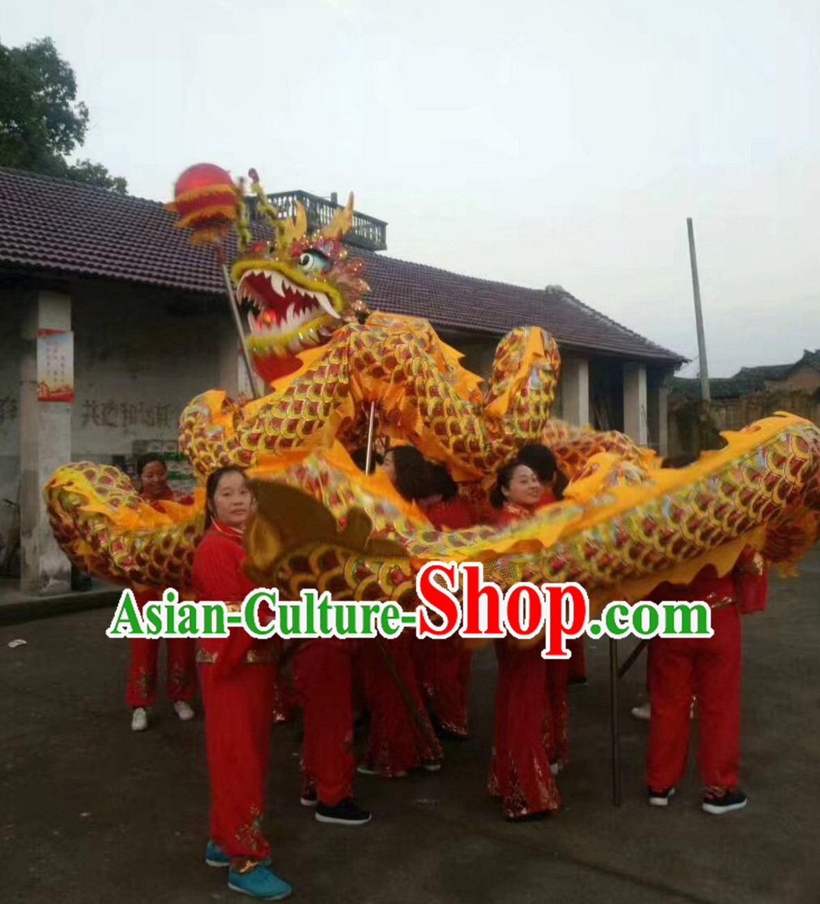 Chinese Classical Parade Procession Golden Dragon Dance Costumes Complete Set for 8 Adults or Kids