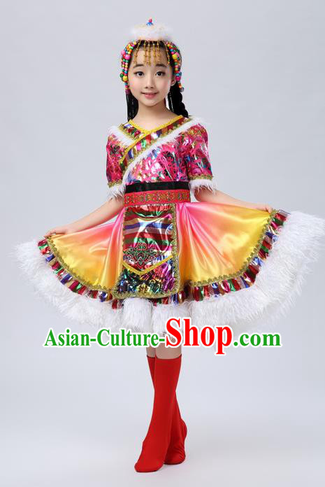 Traditional Chinese Mongol Nationality Dance Costume, Mongols Children Dance Ethnic Pleated Skirt for Kids