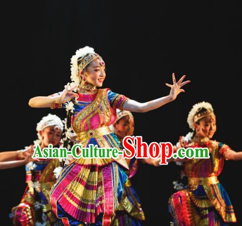 Traditional Chinese Indian Nationality Folk Dance Embroidered Costume, China Ethnic Minority Dance Clothing for Women