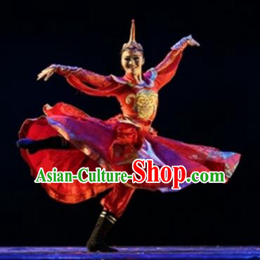 Traditional Chinese Folk Dance Embroidered Costume, China Mongol Nationality Dress Clothing for Women
