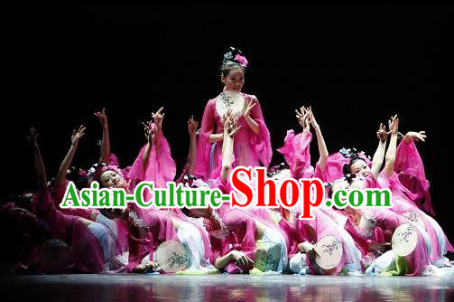 Chinese Traditional Folk Dance Costume, China Classical Dance Pink Dress Clothing for Women