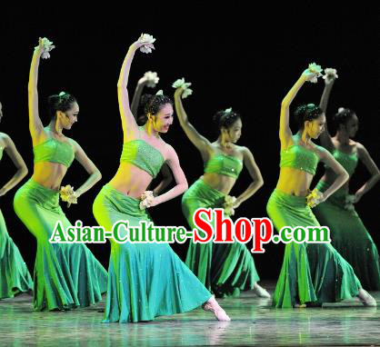 Chinese Traditional Folk Dance Stage Performance Costume, China Classical Dance Pavane Dress Clothing for Women