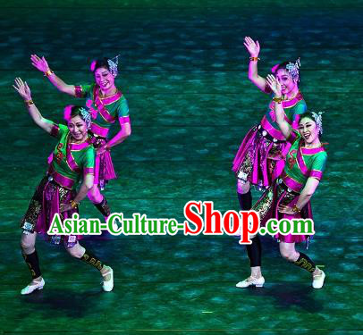 Traditional Chinese Yangko Dance Ethnic Costume, Folk Dance Minority Nationality Dance Clothing for Women