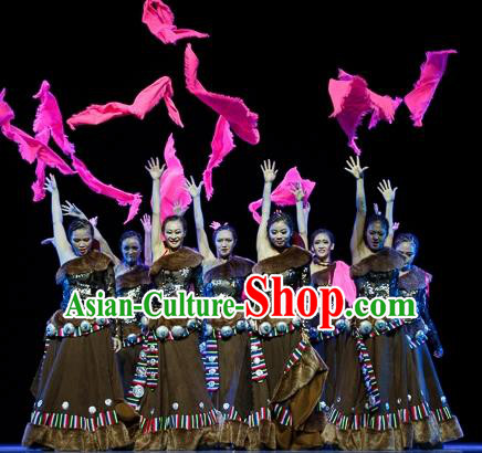 Traditional Chinese Zang Nationality Dancing Costume, Tibetan Folk Dance Ethnic Minority Embroidery Clothing for Women