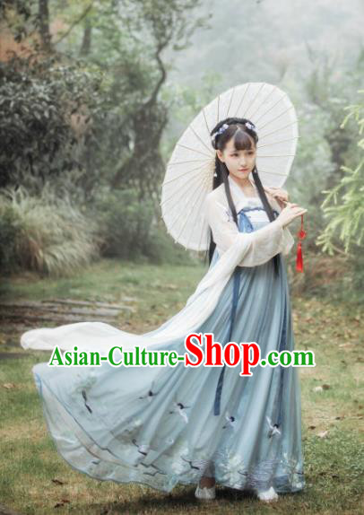 Ancient Chinese Traditional Tang Dynasty Princess Embroidered Costumes for Women
