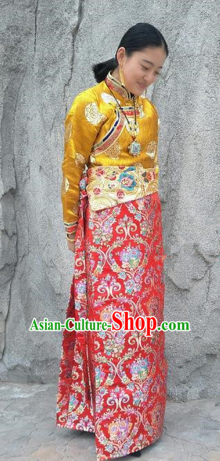 Chinese Traditional Zang Nationality Red Brocade Bust Skirt, China Tibetan Heishui Dance Costume for Women