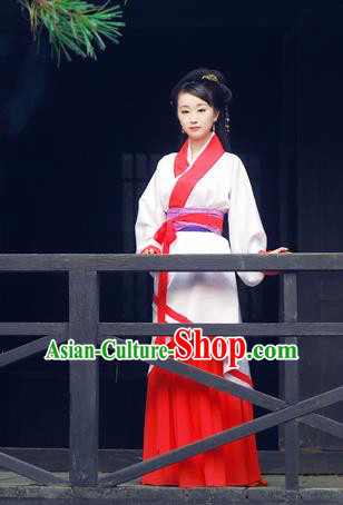 Chinese Ancient Drama Han Dynasty Swordswoman Embroidered Hanfu Dress for Women