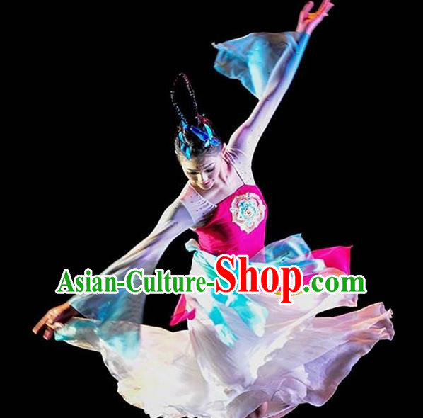 Chinese Traditional Folk Dance Costume Classical Dance Clothing for Women