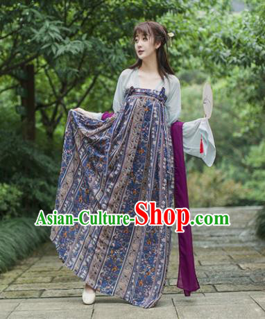 Traditional Chinese Tang Dynasty Maidenform Costume Ancient Princess Hanfu Dress for Women