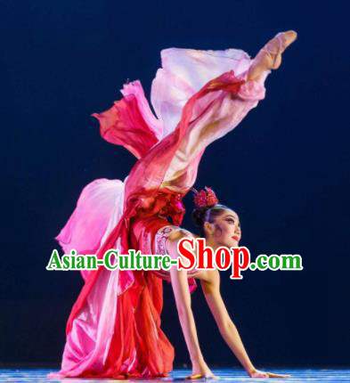Chinese Traditional Classical Dance Costumes Umbrella Dance Red Dress for Women