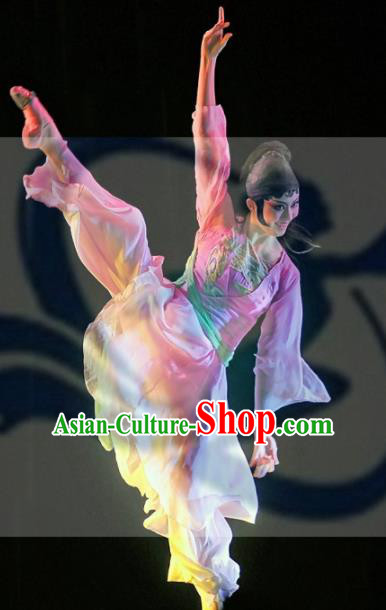 Chinese Traditional Folk Dance Group Dance Stage Performance Costumes Peking Opera Dress for Women