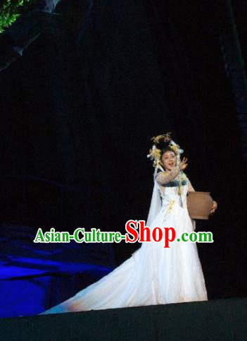 Chinese Chang E The Goddess of The Moon Dance White Dress Stage Performance Costume and Headpiece for Women