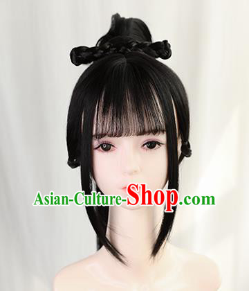 Traditional Chinese Cosplay Ming Dynasty Swordswoman Wigs Sheath Ancient Nobility Lady Chignon for Women