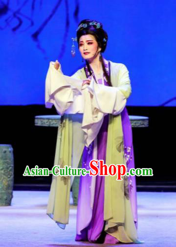Phoenix Hairpin Chinese Peking Opera Diva Purple Dress Stage Performance Dance Costume and Headpiece for Women