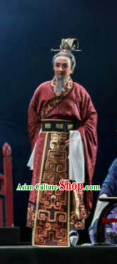 Chinese Shaoxing Opera Bronze Swallow Terrace Minister Clothing Stage Performance Dance Costume for Men