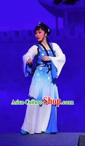 Amber Fate Chinese Beijing Opera Maidservant Blue Dress Stage Performance Dance Costume and Headpiece for Women