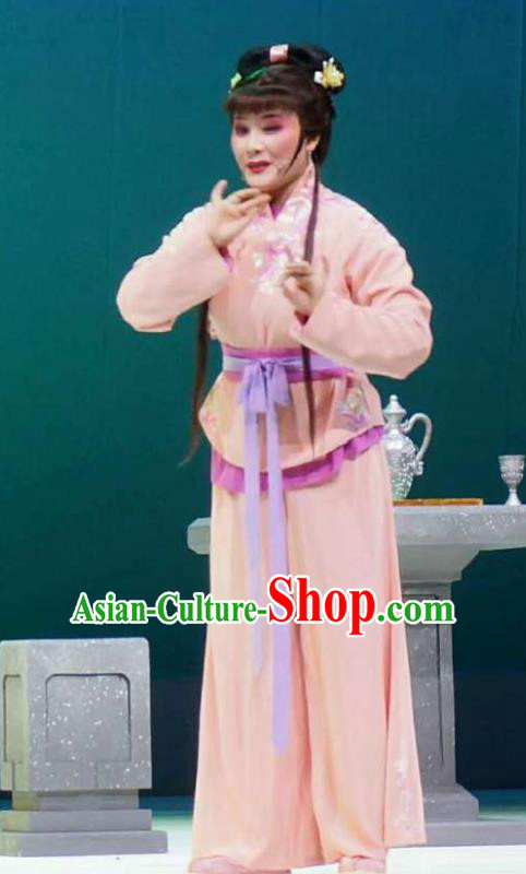 Xiang Luo Ji Chinese Shaoxing Opera Maidservant Pink Dress Stage Performance Dance Costume and Headpiece for Women