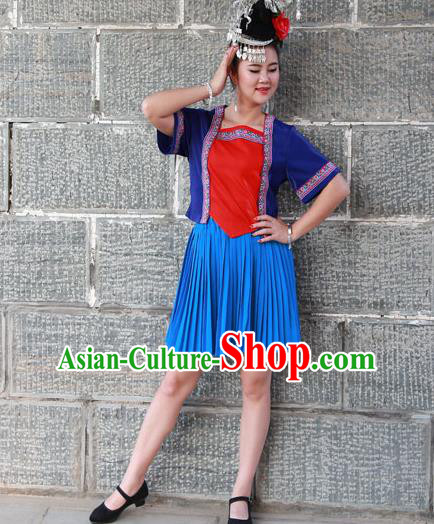 Chinese Traditional Miao Nationality Costume Ethnic Folk Dance Blue Dress for Women