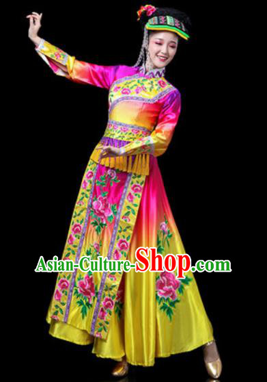 Chinese Traditional Ethnic Dance Costume Yi Nationality Dance Rosy Dress for Women