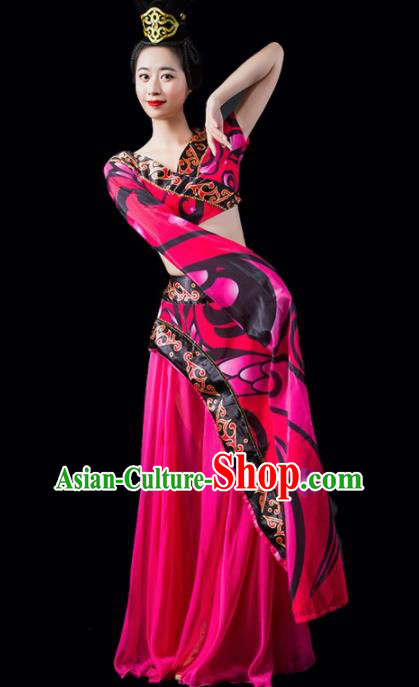 Chinese Traditional Classical Dance Costume Peri Dance Water Sleeve Rosy Dress for Women