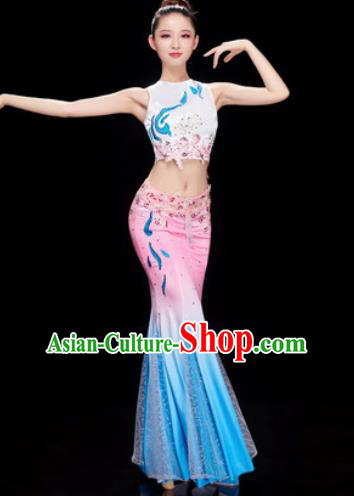 Traditional Chinese Dai Nationality Folk Dance Dress National Ethnic Peacock Dance Costume for Women