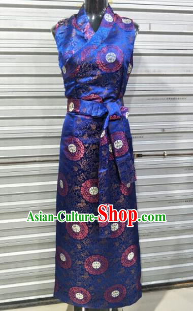 Traditional Chinese National Tibetan Ethnic Royalblue Dress Zang Nationality Folk Dance Costume for Women