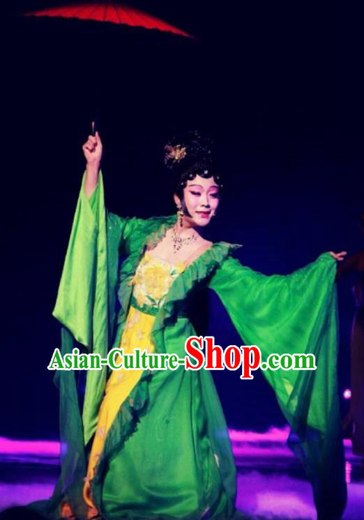 Traditional Chinese Classical Dance Jing Hua Shui Yue Costume Beijing Opera Beautiful Dance Green Dress for Women